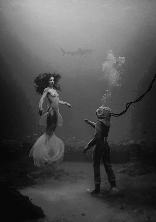 Mermaids, divers and sharks