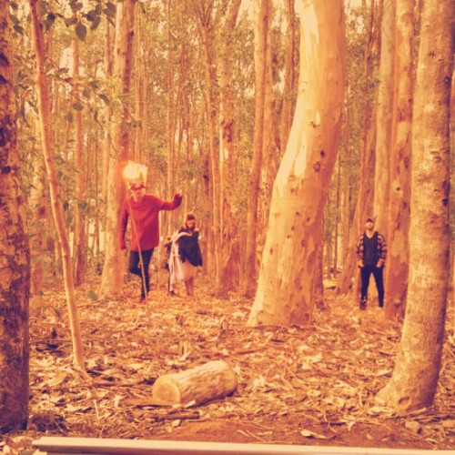 Jakkals band in the forest - shooting on location in Cape Town