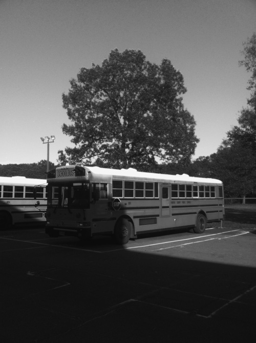 American school bus, Northern Virginia.