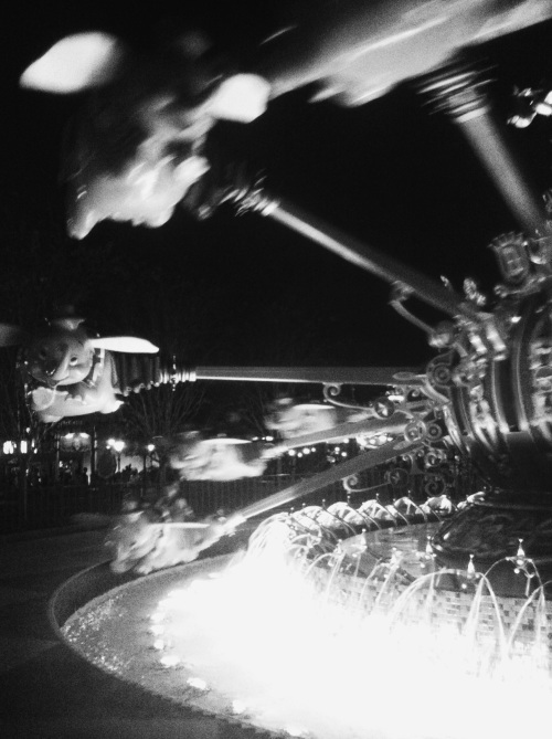 Flying Dumbo ride.