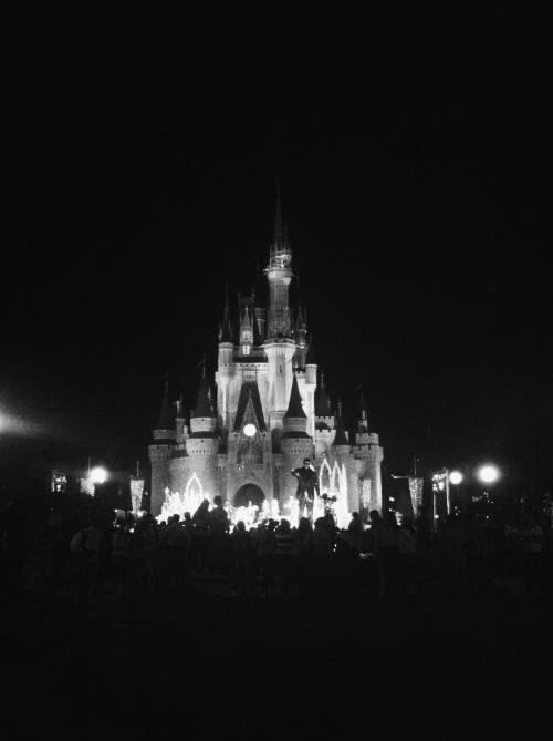 Magic Kingdom at night.