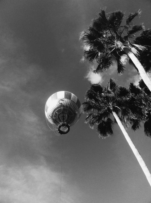 Hot air balloon time.