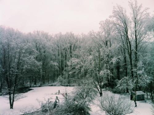 Northern Virginia snow.